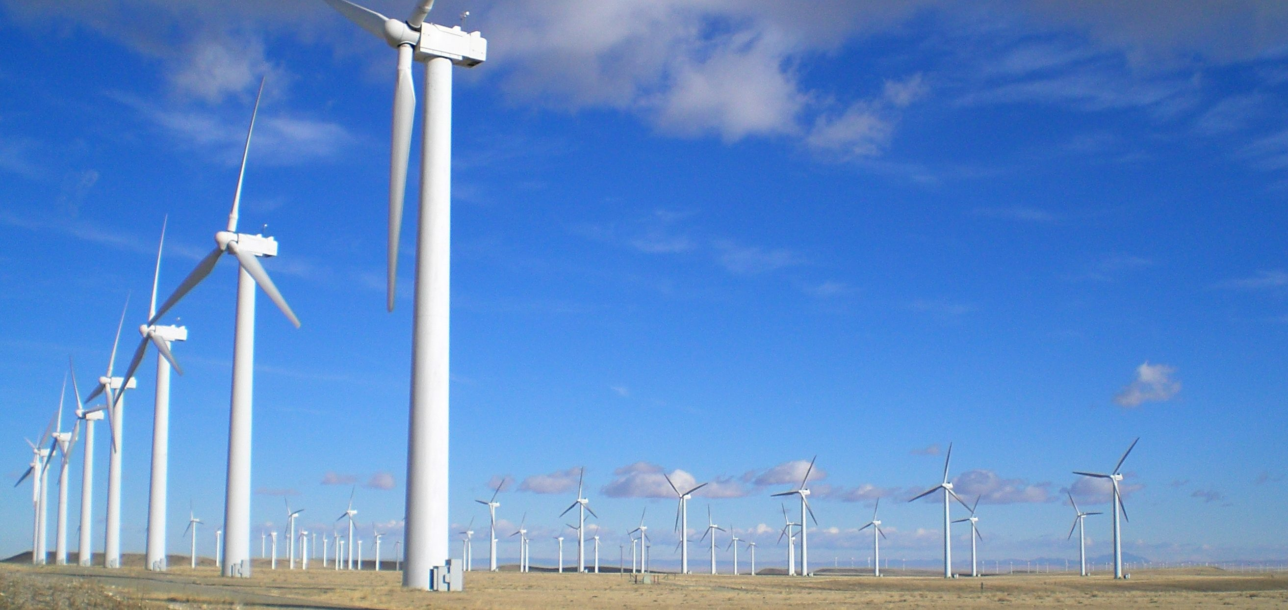 dozens of wind turbines on a prairie project WLC provided wind and transmission support services