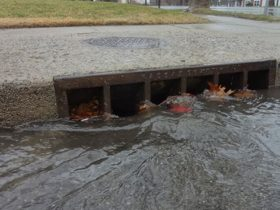 Picture of stormwater running down a street gutter into the sewer grate