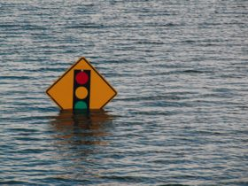A picture of a street light road sign with water up to the green light